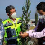 Realizan campaña de mantenimiento sobre áreas verdes de las vialidades